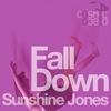 Couverture de l'album Fall Down (Remixes)