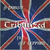 Couverture de l'album Tributized: A Tribute to Def Leppard