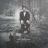 Couverture de l'album The Langsyne Litanies