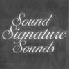 Couverture de l'album Sound Signature Sounds (feat. Jerrald James)