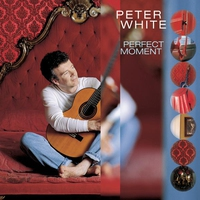 Cover of the track Perfect Moment
