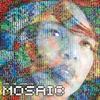 Couverture de l'album The Mosaic Project