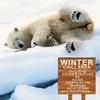Cover of the album Winter Chill Area