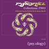 Couverture de l'album Psynopticz Collections : Two