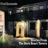 Couverture de l'album Stories from the Dark Heart Tavern