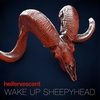 Cover of the album Wake Up Sheepyhead