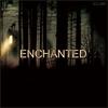 Couverture de l'album Enchanted