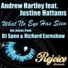 Couverture de l'album What No Eye Has Seen (feat. Justine Hattams) [Remixes]