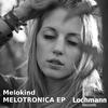 Couverture de l'album Melotronica