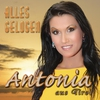 Cover of the album Alles gelogen - Single