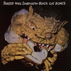 Cover of the album Barbed Wire Sandwich
