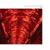 Couverture de l'album Red