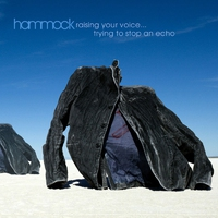 Cover of the track Raising Your Voice… Trying to Stop an Echo