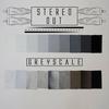Couverture de l'album Grey Scale