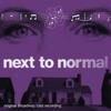 Couverture de l'album Next to Normal (Original Broadway Cast Recording)