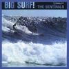 Cover of the album Big Surf