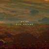Couverture de l'album Pipe Dreams