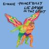 Couverture de l'album Lie Down in the Light