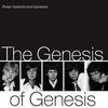Couverture de l'album The Genesis of Genesis