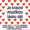 Couverture de l'album Je Krasne Muzikou Lasku Dat