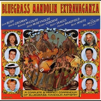 Cover of the track Bluegrass Mandolin Extravaganza