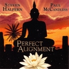 Cover of the album Perfect Alignment