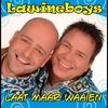 Cover of the track Laat maar waaien