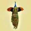 Cover of the album Interbellum