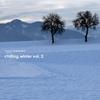 Couverture de l'album Stereoheaven Pres. Chilling Winter Vol. 2