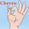 Cover of the album Cheveu