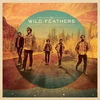 Cover of the album The Wild Feathers (Deluxe Version)