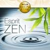Couverture de l'album Esprit zen: Collection Gold Bien-Etre